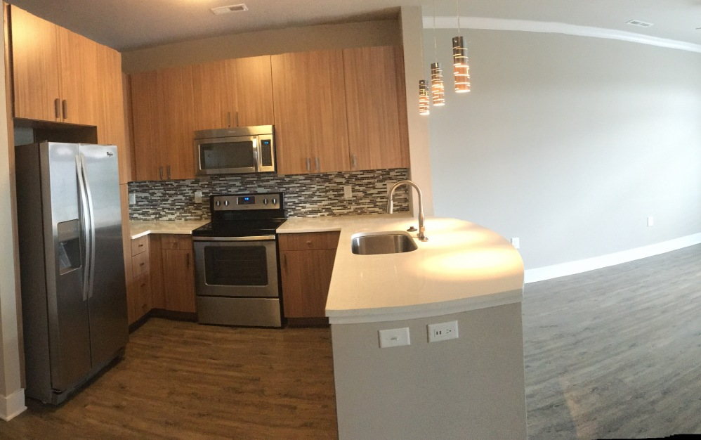 Luxury 702 square foot one bedroom apartment in Downtown Raleigh, NC at Elan City Center Apartments