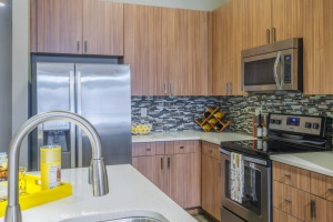 Designer kitchen with quartz countertops, glass tile backsplash, and stainless-steel energy efficient appliances
